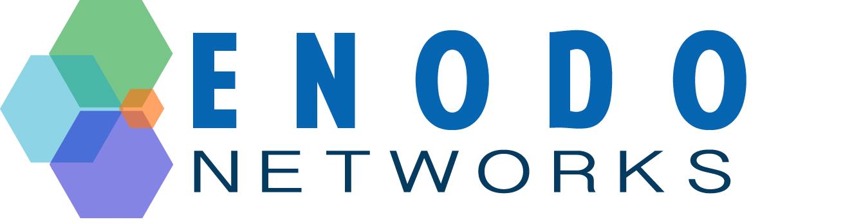 vmware nsx-t and nsx-v
